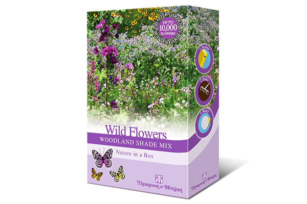 Free AirWick Wildflower Seeds